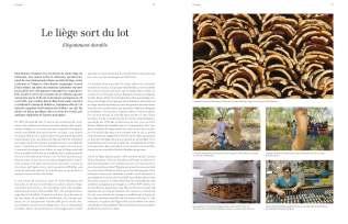 Ou17_Liege_Page_1