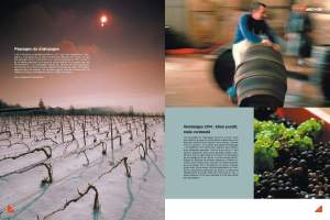 AEC-42-champagne_Page_3