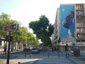 C215-sur-les-murs-de-Paris