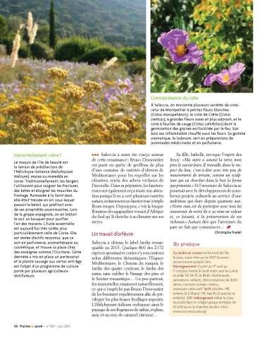 Parc Saleccia 0615 Plantes et Santé_Page_3