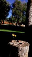 Colo 5 pierres coloradas Sylvan Dale Ranch jpg